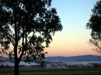 Bluebush Estate - Kempsey Accommodation