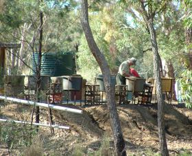 7 Oaks Sapphire Fossicking - Kempsey Accommodation
