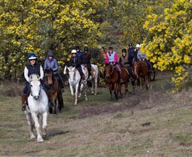 Burnelee Excursions on Horseback - Kempsey Accommodation